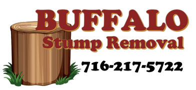 BUFFALO STUMP REMOVAL